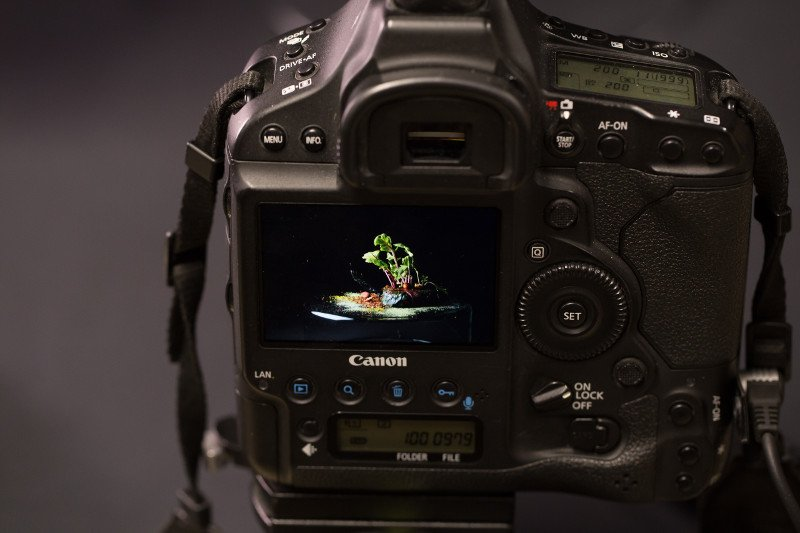 Masterclass Food Photograpy - Ph. Federico Porta